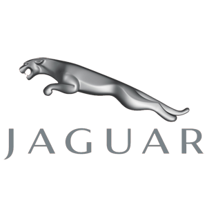 Jaguar Servicing logo