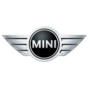 Mini Servicing logo
